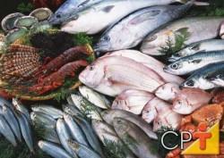 Uma das possibilidades para venda do pescado no varejo é o peixe inteiro mantido em gelo, refrigerado