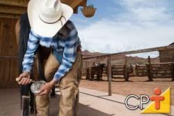Nos cavalos de raça fina, a regeneração do casco é mais rápida
