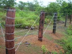 s cercas de arame liso serem recomendadas para terrenos de topografia plana e regular