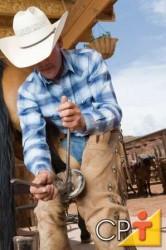 As ferraduras são escolhidas pela forma, pelo tamanho e peso mais apropriados às condições do casco, ao gênero do serviço, à natureza do solo