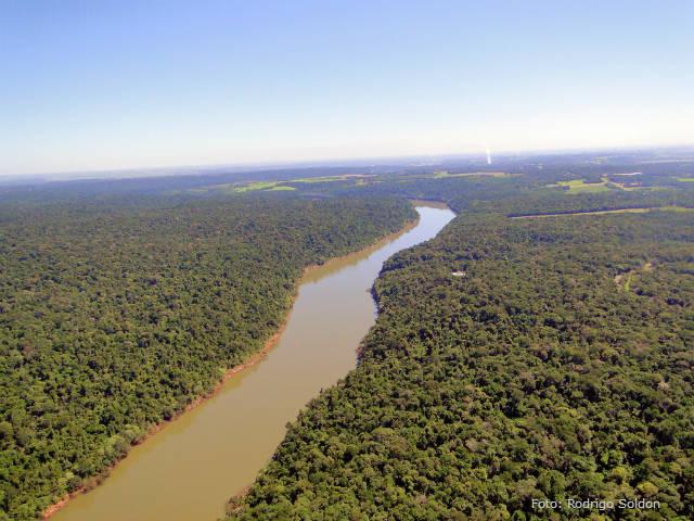 Dia Mundial da Água: a importância dos rios