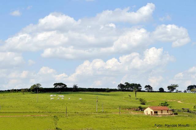 Saiba as diferenças entre fazenda, sítio, chácara e rancho