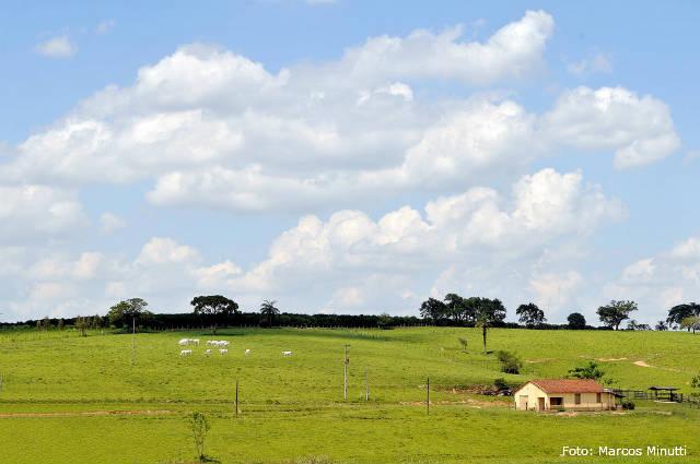 Prazo para Cadastro Ambiental Rural termina 5 de maio