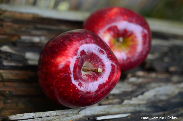 Ceras utilizadas em frutas