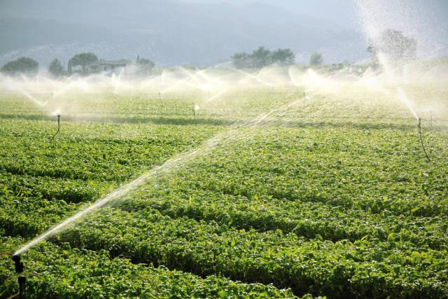 Estudo mostra o Brasil entre os países com maior área irrigada