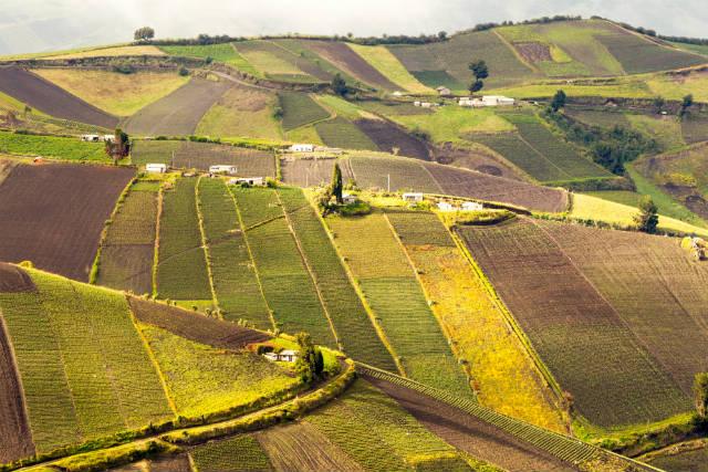 Especialista dá dicas para regularizar propriedades rurais
