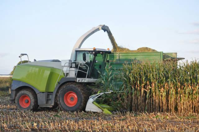 Produza silagem na própria fazenda e economize mais de 50%