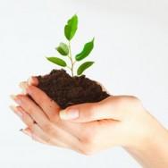 Aprenda Fácil Editora: Recuperação de áreas degradadas