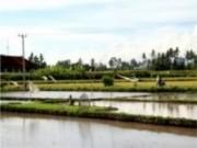 Sebrae promove cadastro de aquicultores com objetivo de fomentar a atividade da pesca no país