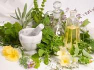 Aprenda Fácil Editora: Plantas medicinais