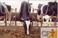 Como se relacionam os parasitas e os bovinos - Devido a existência de parasitas no intestino delgado, os bovinos não conseguem aproveitar direito os nutrientes dos alimentos ingeridos