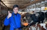 Objetivos e vantagens da inseminação artificial em bovinos