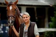Doma natural de cavalos - passo a passo para a doma de baixo