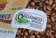 Princípios básicos seguidos pelos maiores produtores de café orgânico