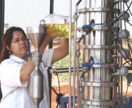 Biodiesel - parâmetros de qualidade