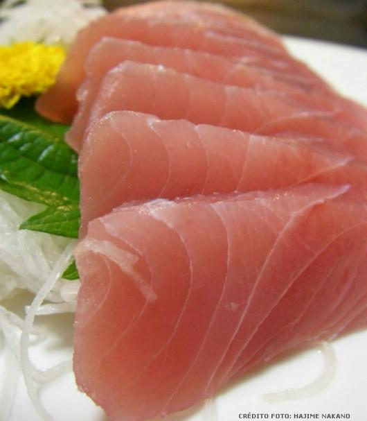 Comida japonesa - Sashimi: Shake Sashimi