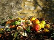 Compostagem orgânica - preparo e qualidade do composto orgânico