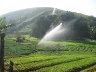 Aprenda Fácil Editora: Irrigação: vantagens da utilização dessa prática