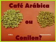 Aprenda Fácil Editora: Conheça as diferenças entre o café conilon e o café arábica