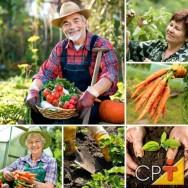 A cenoura  é a melhor fonte vegetal de pró-vitamina A.