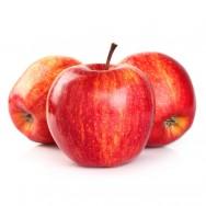 Aprenda Fácil Editora: Fruticultura Orgânica: cultivo de maçã