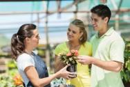 Floricultura - 12 super dicas úteis para a montagem do seu próprio negócio