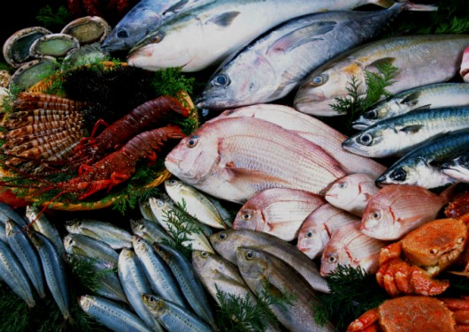 Processamento de peixes - conheça as etapas e o passo a passo para a filetagem da truta