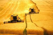 O Brasil  apresenta a maior área a ser utilizada para expansão do setor agrícola, seguido dos Estados Unidos e da Rússia.