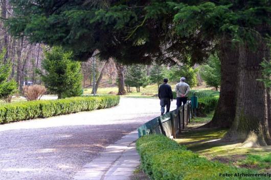 Cuidador de idosos - você sabe como gerenciar o tempo de idosos portadores de Alzheimer