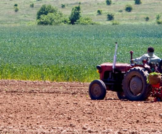 Calagem do solo: principais métodos e cuidados importantes