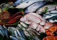 Processamento de pescado - etapas e tipos ideais de peixe para o beneficiamento