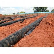 Pelo sistema de irrigação por gotejamento, a água é levada sob pressão por tubos até os pomares