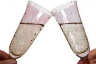 O champanhe pode ser servido em qualquer ocasião