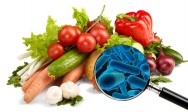 Segurança alimentar: microrganismos patógenos e benéficos aos alimentos