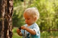 Educação Infantil: o conhecimento da natureza e da sociedade