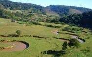 Sistema Agroflorestal (SAF) Temporário e Permanente