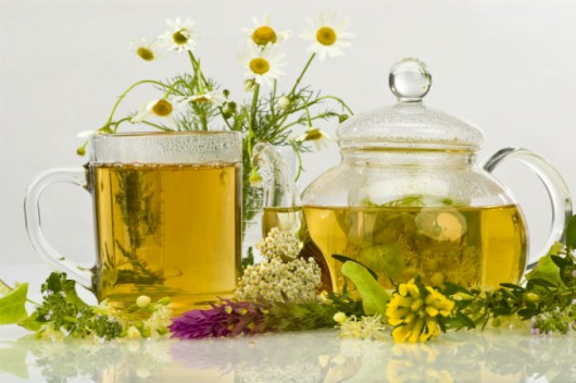 Plantas medicinais - loção para a queda de cabelo, complexo emagrecedor e pomada para a psoríase