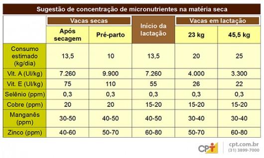 Gado de leite - suplementação atua na prevenção da mastite e aumenta a qualidade do leite