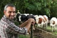 A compração com fazendas do mesmo porte ajuda o produtor a enxergar se na fazenda está havendo desperdício ou eficiência de recursos