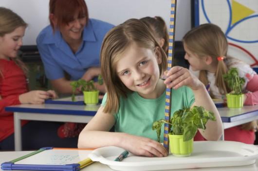 O Construtivismo nas aulas práticas e demonstrativas