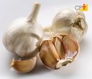 Alho orgânico - colheita, cura, armazenamento e beneficiamento do alho
