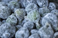 A indústria caseira de figo cristalizado evita o desperdício da fruta e gera renda ao produtor rural