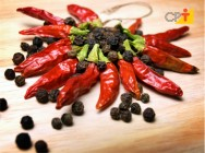 Pimentas domésticas - saiba tudo sobre o gênero Capsicum