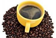 Na classificação do café de acordo com o tipo de bebida, o especialista fará uma forte sucção e permanecerá com o produto na boca tempo suficiente até sentir o sabor.