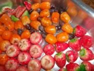 A confecção de frutas e legumes feitos com parafina exige do empreendedor pouco investimento inicial. Foto: Reprodução