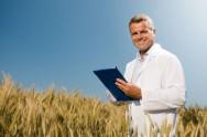 O planejamento estratégico eficiente é aquele em que o produtor tem em mente seis fases sequenciais e concatenadas