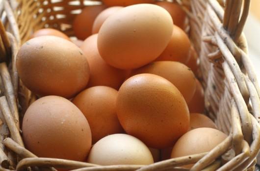 Comercialização de ovos: classificação, rótulo, identificação e embalagens