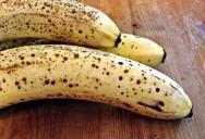A banana é um dos frutos mais consumidos no Brasil. Foto/crédito: Cbertel
