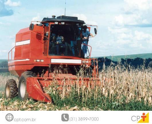 Como planejar a colheita manual e mecânica do milho