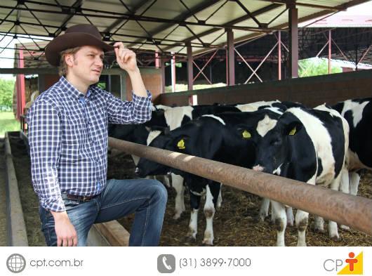 Gado de leite - saiba mais sobre o melhoramento genético. Curso CPT Melhoramento Genético em Gado de Leite